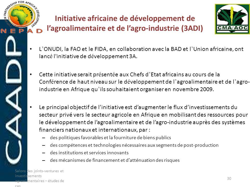 Initiative africaine de développement de l'agroalimentaire et de l'agro-industrie (3ADI)
