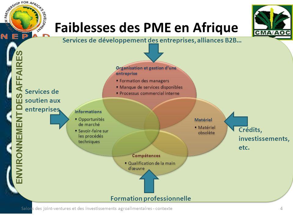 Faiblesses des PME en Afrique