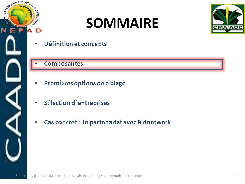 SOMMAIRE Définition et concepts Composantes