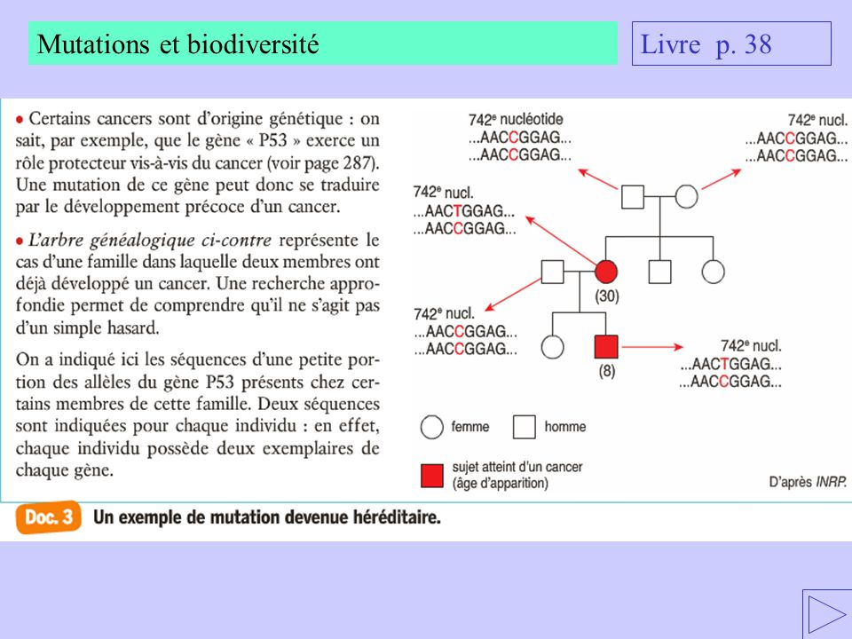 Mutations et biodiversité