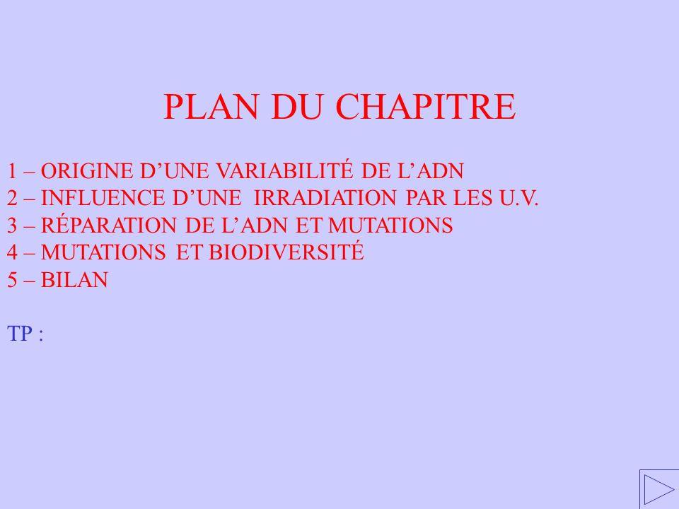 PLAN DU CHAPITRE 1 – ORIGINE D'UNE VARIABILITÉ DE L'ADN