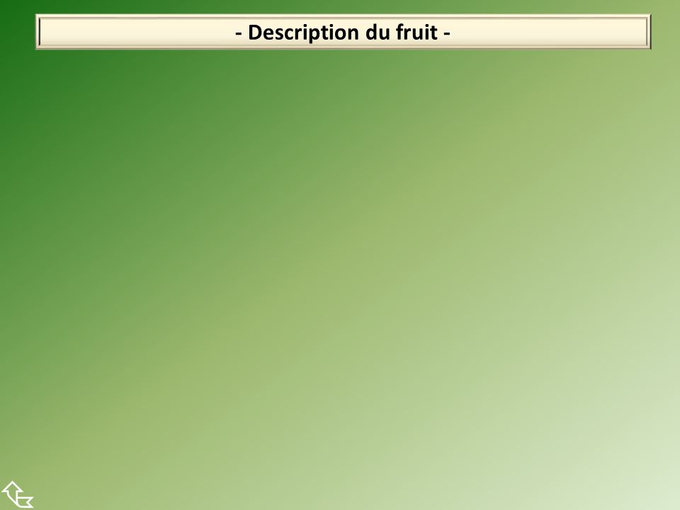 - Description du fruit -
