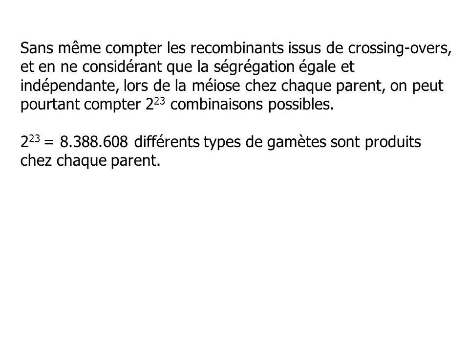 Sans même compter les recombinants issus de crossing-overs, et en ne considérant que la ségrégation égale et indépendante, lors de la méiose chez chaque parent, on peut pourtant compter 223 combinaisons possibles.