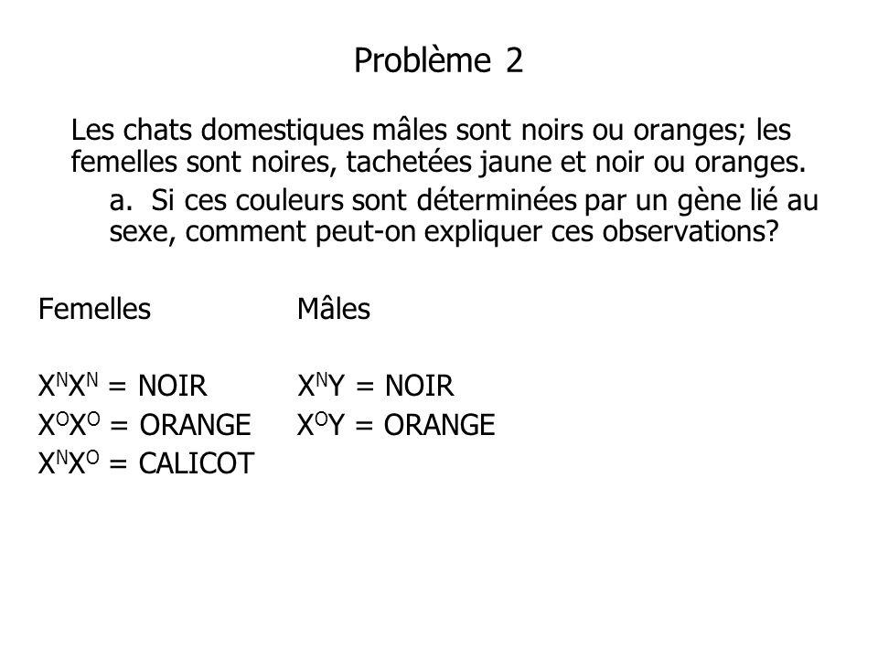 Problème 2 Les chats domestiques mâles sont noirs ou oranges; les femelles sont noires, tachetées jaune et noir ou oranges.