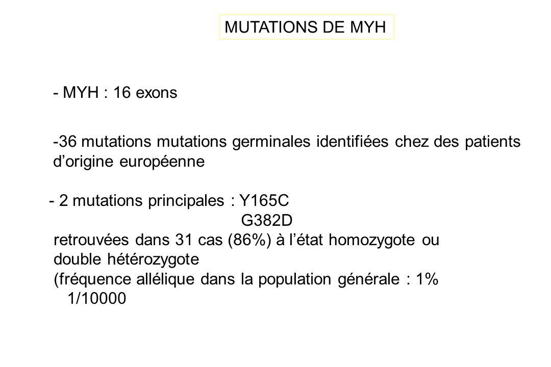 MUTATIONS DE MYH - MYH : 16 exons. 36 mutations mutations germinales identifiées chez des patients.