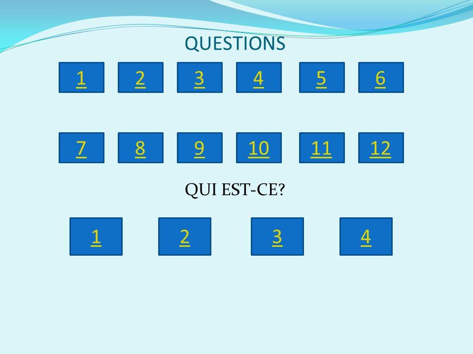 QUESTIONS 1 2 3 4 5 6 7 8 9 10 11 12 QUI EST-CE 1 2 3 4