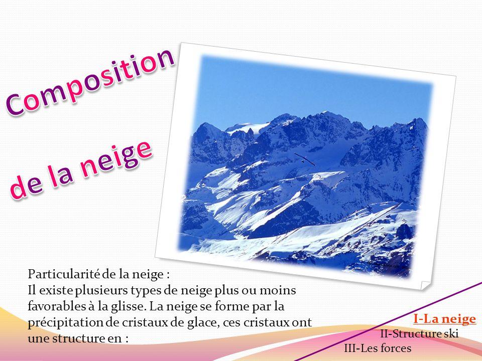 Composition de la neige