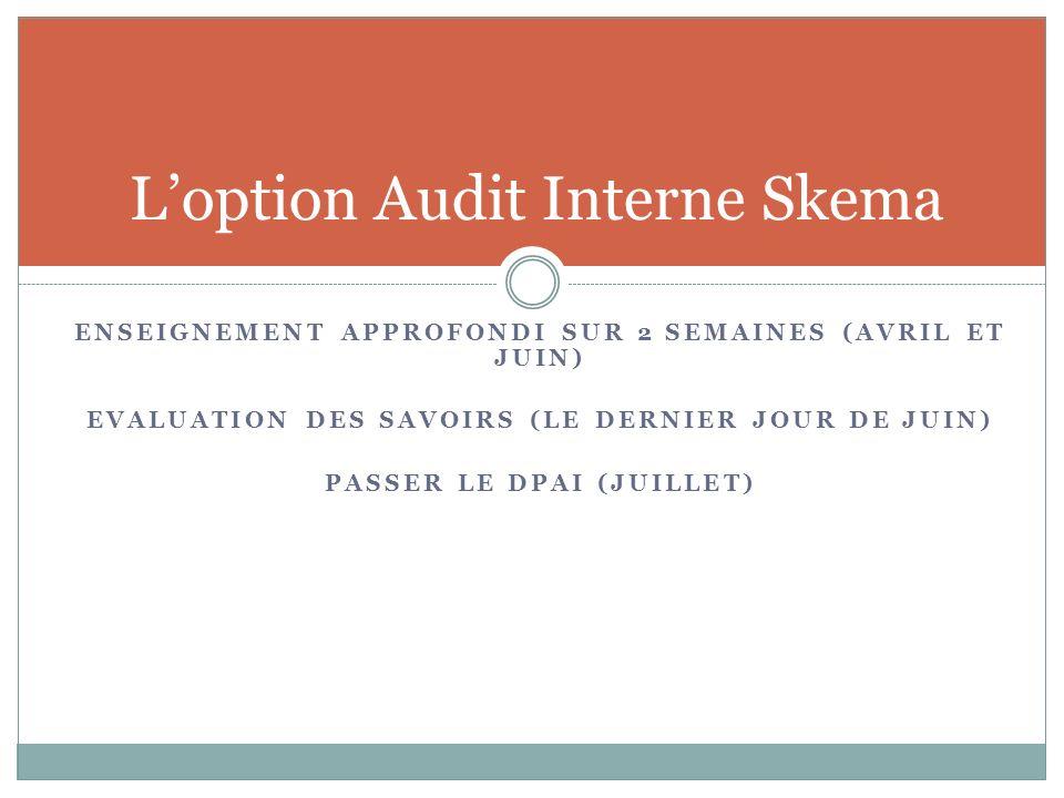 L'option Audit Interne Skema