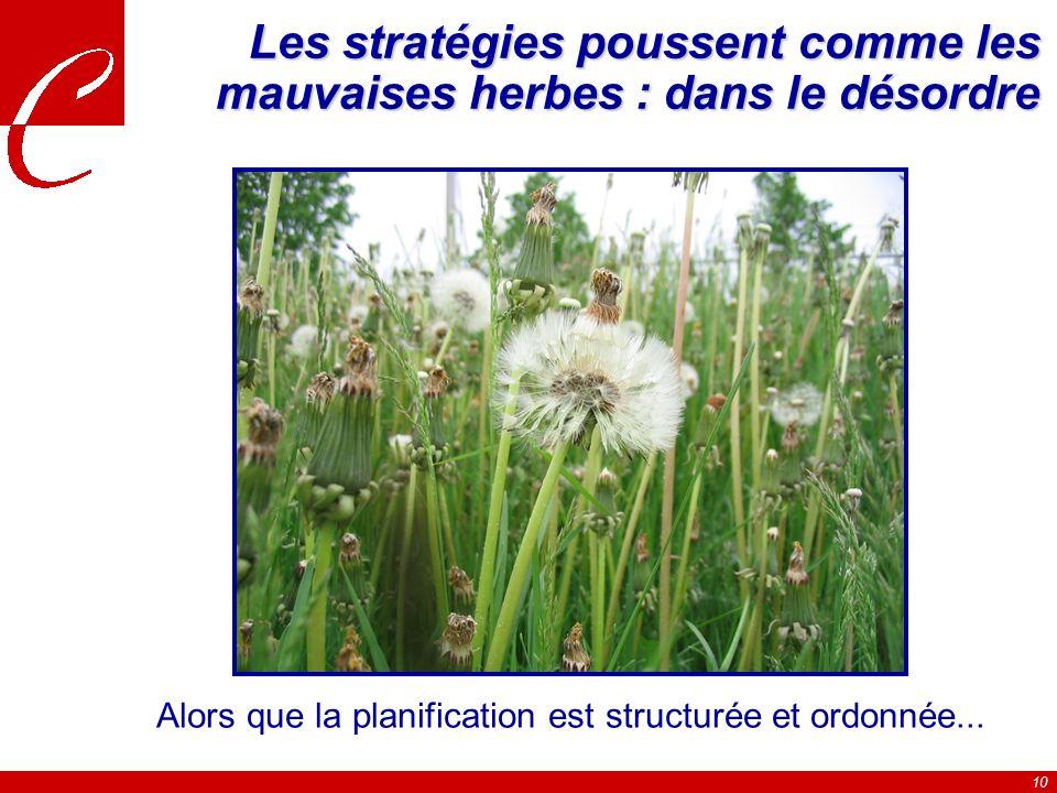 Les stratégies poussent comme les mauvaises herbes : dans le désordre