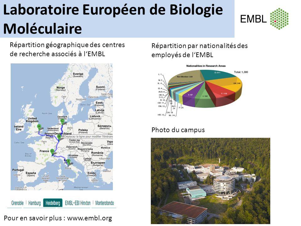 Laboratoire Européen de Biologie Moléculaire