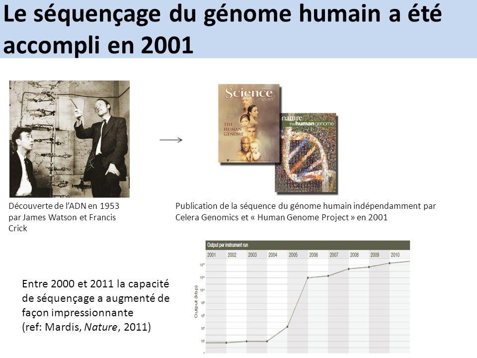 Le séquençage du génome humain a été accompli en 2001