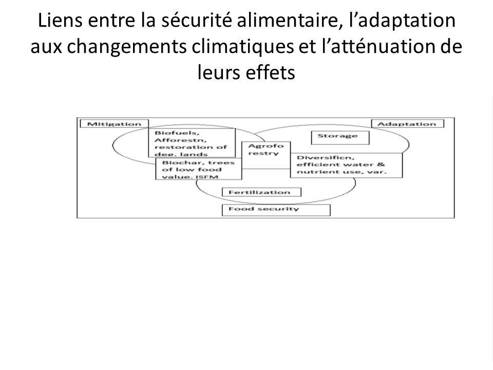 Liens entre la sécurité alimentaire, l'adaptation aux changements climatiques et l'atténuation de leurs effets