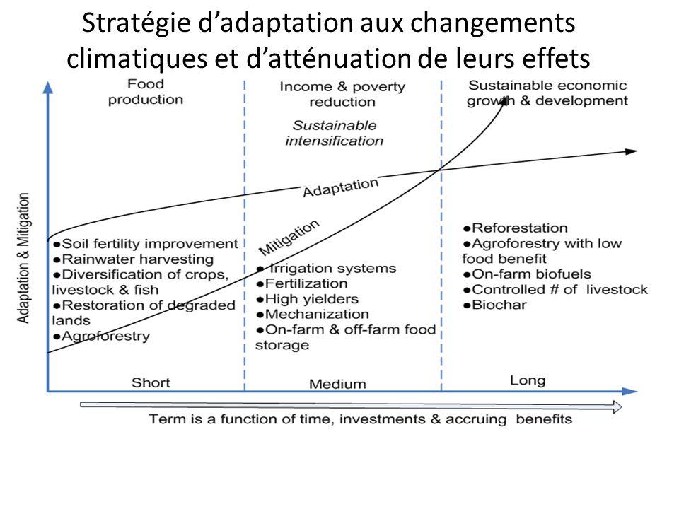Stratégie d'adaptation aux changements climatiques et d'atténuation de leurs effets