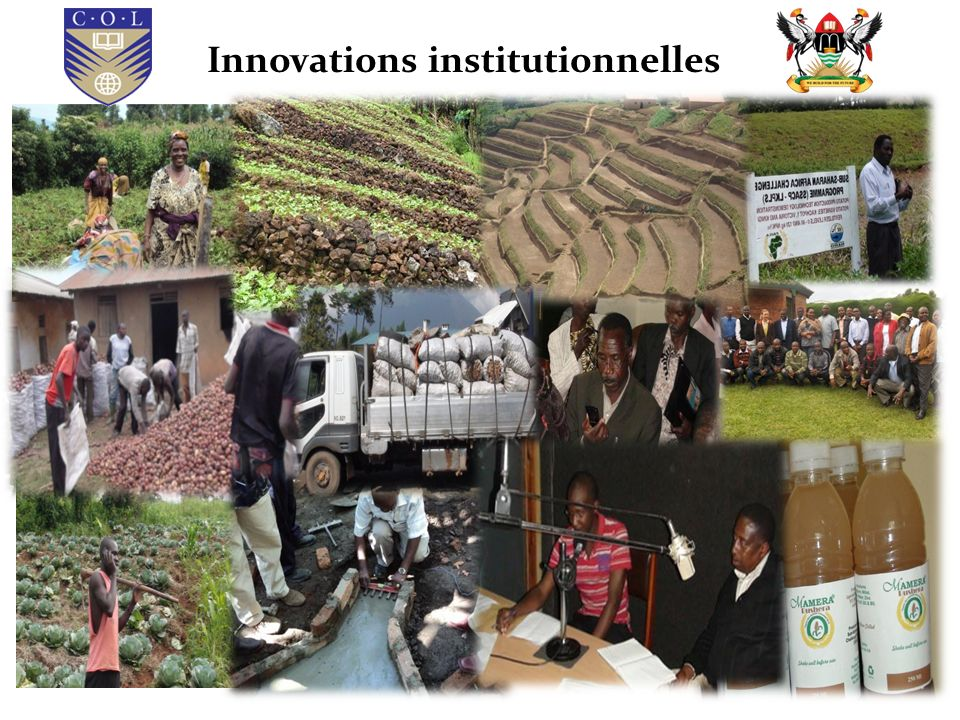 Innovations institutionnelles