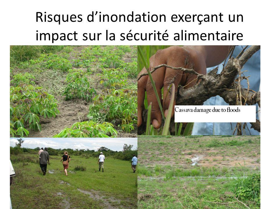 Risques d'inondation exerçant un impact sur la sécurité alimentaire