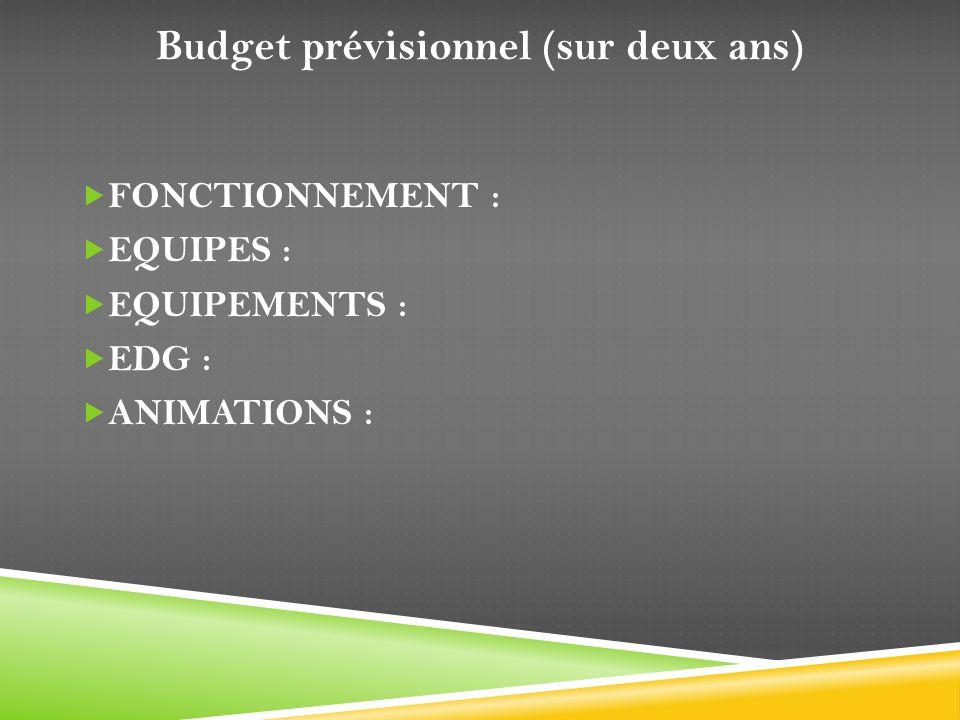Budget prévisionnel (sur deux ans)