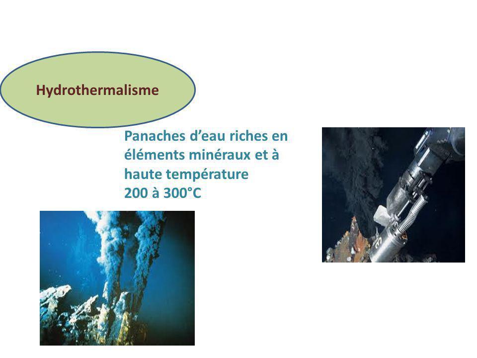 Hydrothermalisme Panaches d'eau riches en éléments minéraux et à haute température 200 à 300°C