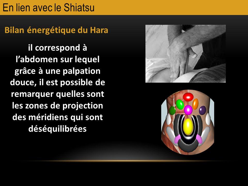En lien avec le Shiatsu Bilan énergétique du Hara