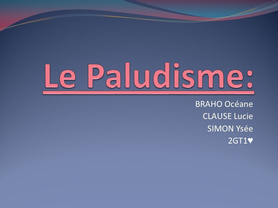BRAHO Océane CLAUSE Lucie SIMON Ysée 2GT1♥