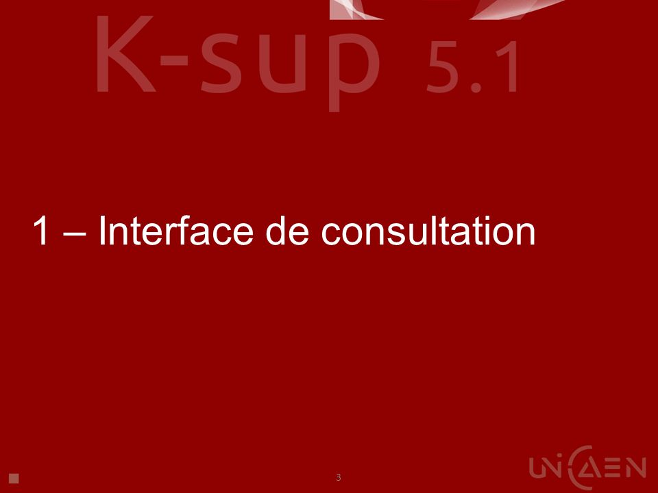 1 – Interface de consultation