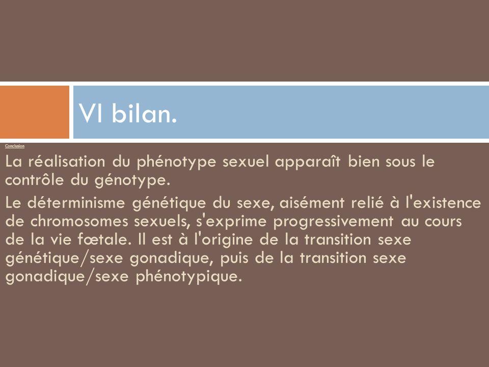 VI bilan. Conclusion. La réalisation du phénotype sexuel apparaît bien sous le contrôle du génotype.