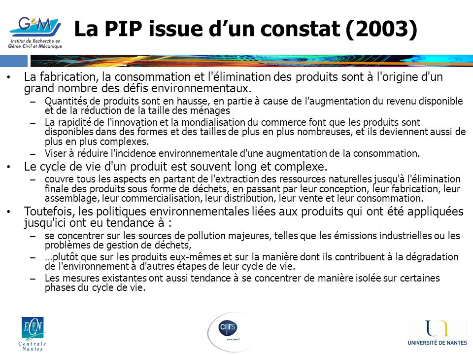 La PIP issue d'un constat (2003)