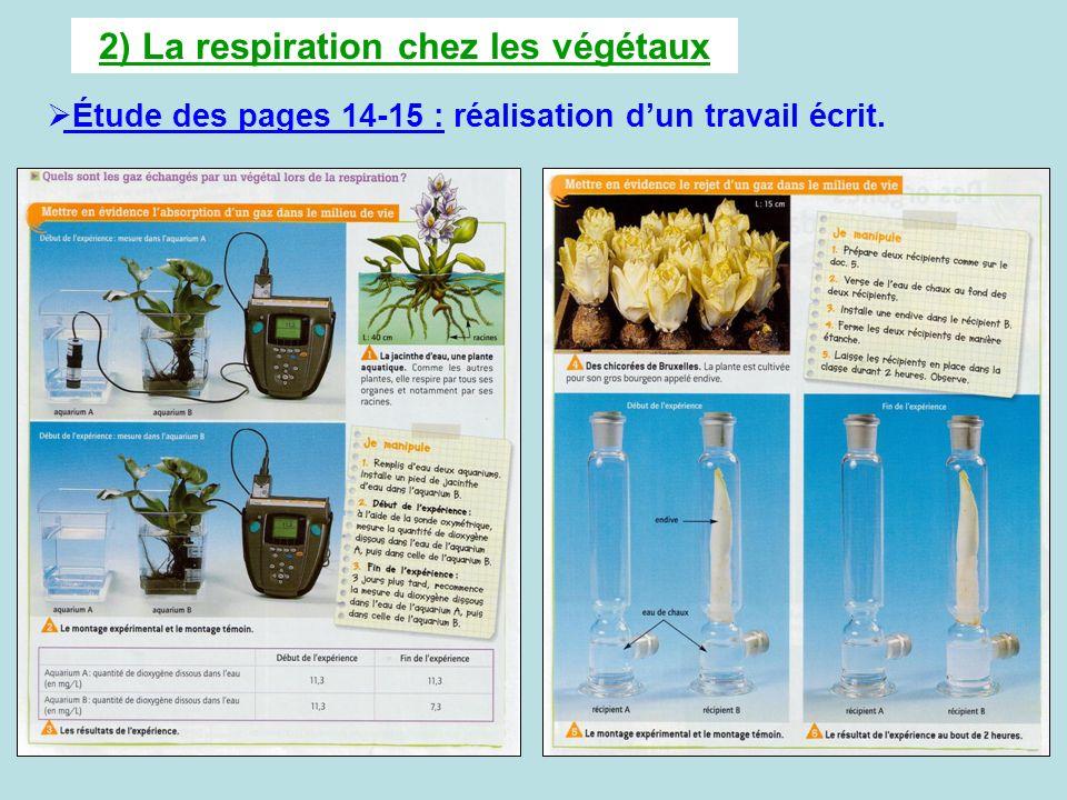 2) La respiration chez les végétaux