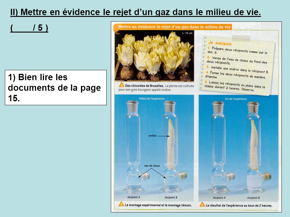 II) Mettre en évidence le rejet d'un gaz dans le milieu de vie.