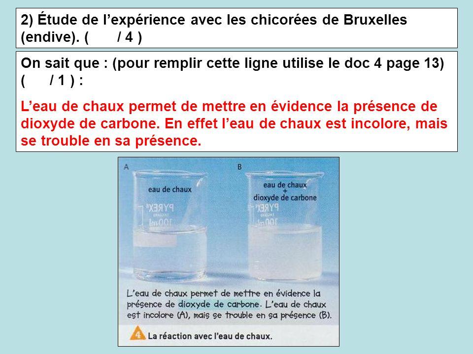 2) Étude de l'expérience avec les chicorées de Bruxelles (endive)