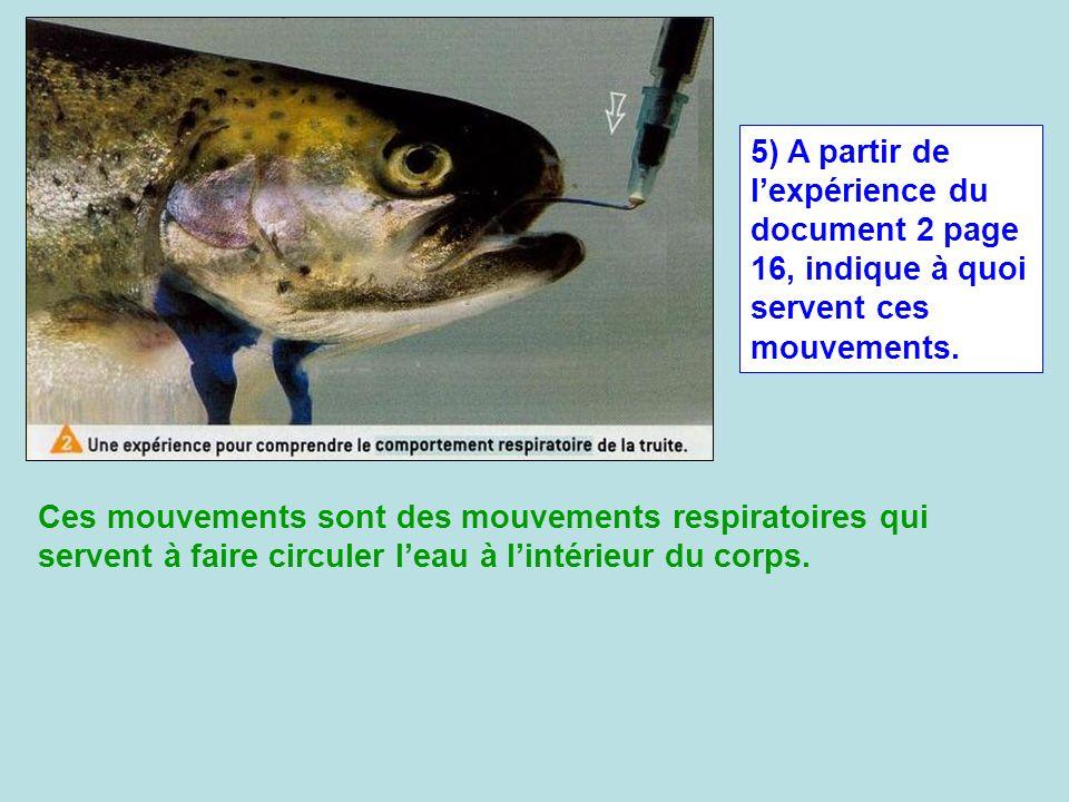 5) A partir de l'expérience du document 2 page 16, indique à quoi servent ces mouvements.