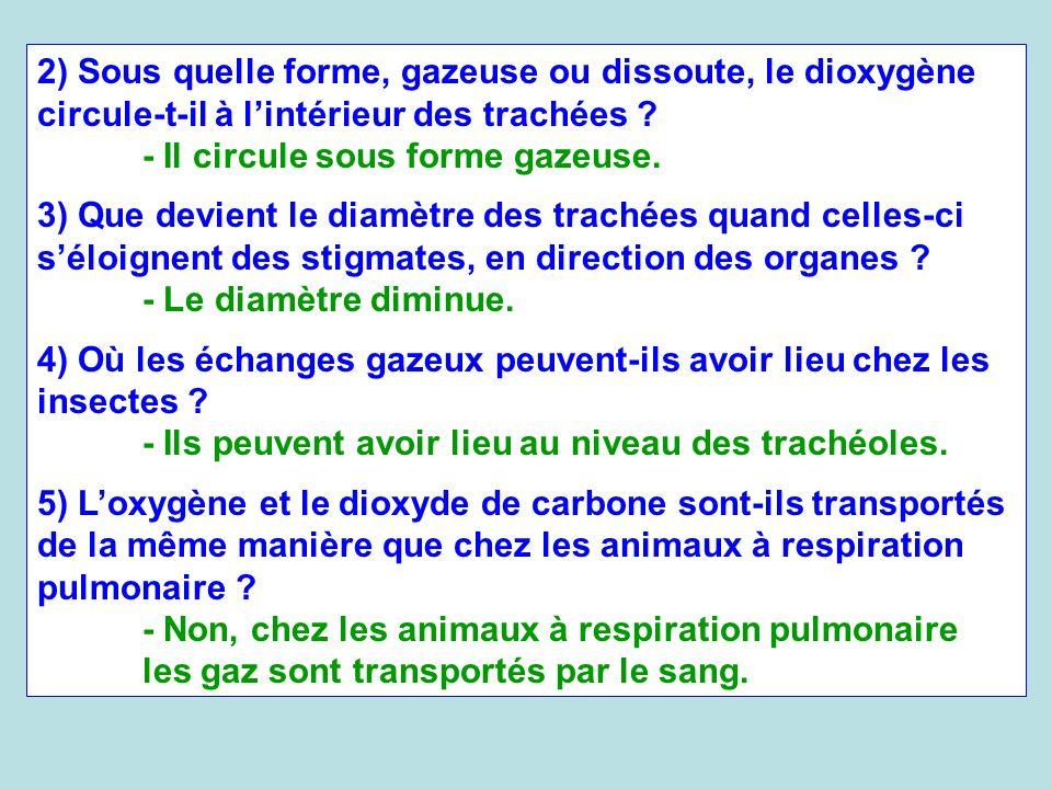 2) Sous quelle forme, gazeuse ou dissoute, le dioxygène circule-t-il à l'intérieur des trachées