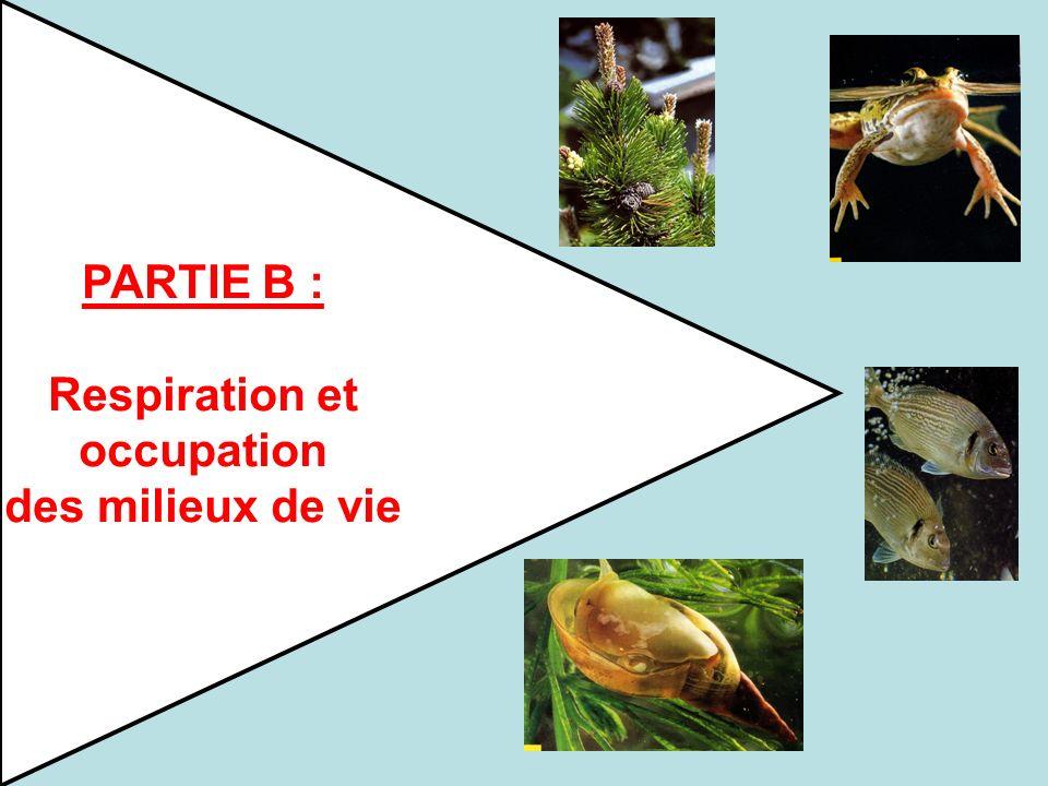 PARTIE B : Respiration et occupation des milieux de vie