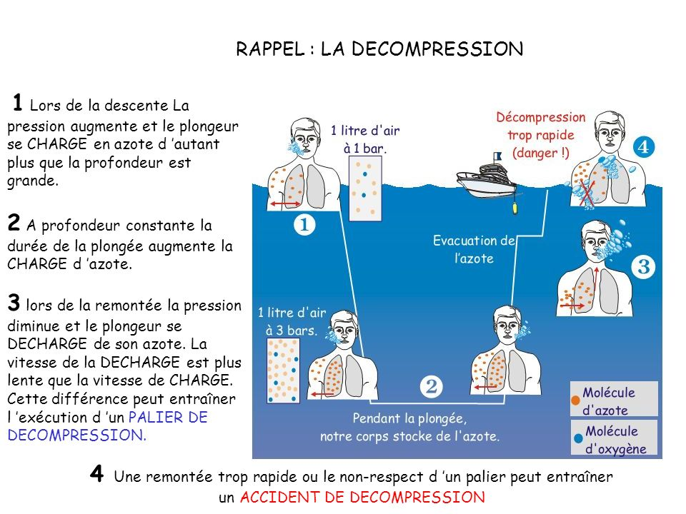 RAPPEL : LA DECOMPRESSION