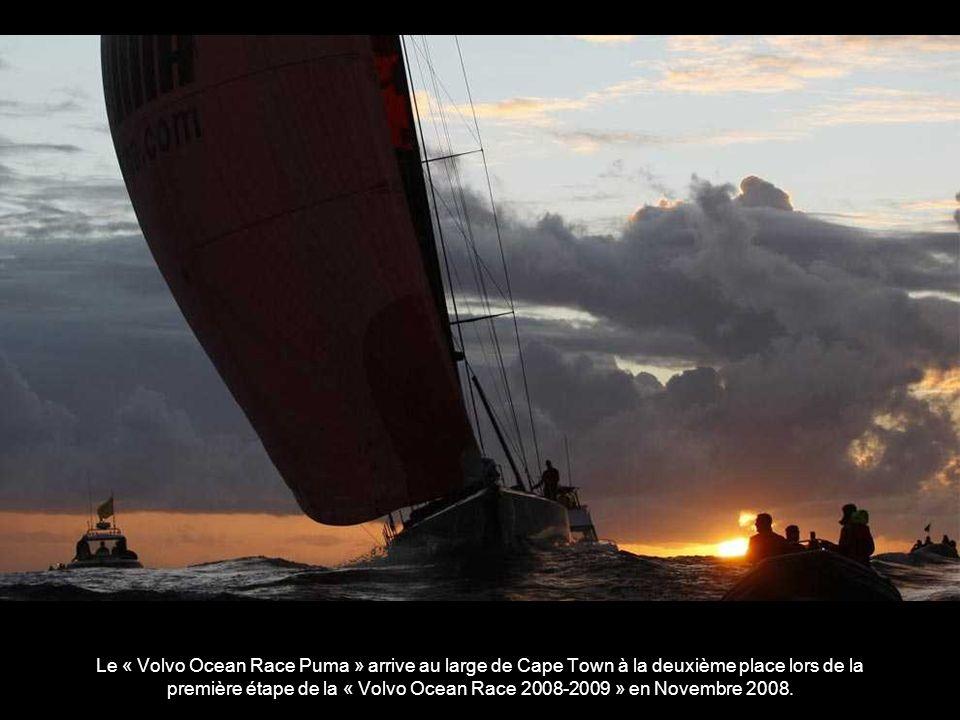 Le « Volvo Ocean Race Puma » arrive au large de Cape Town à la deuxième place lors de la première étape de la « Volvo Ocean Race 2008-2009 » en Novembre 2008.