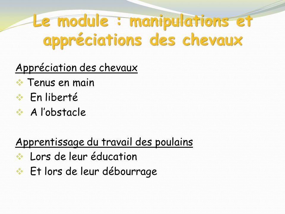 Le module : manipulations et appréciations des chevaux