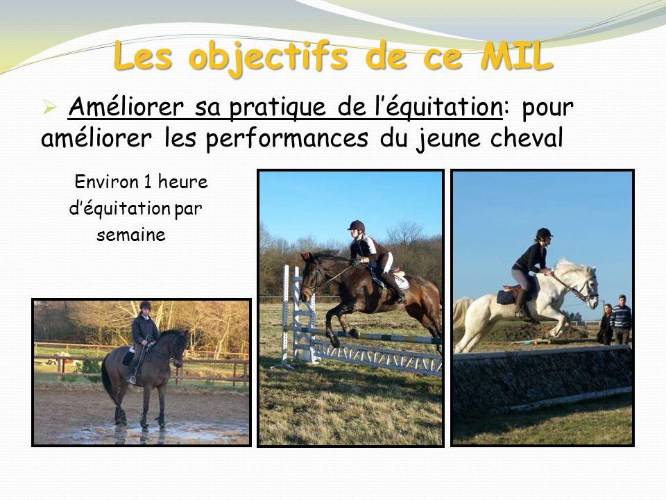Les objectifs de ce MIL Améliorer sa pratique de l'équitation: pour améliorer les performances du jeune cheval.