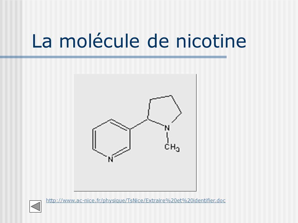 La molécule de nicotine