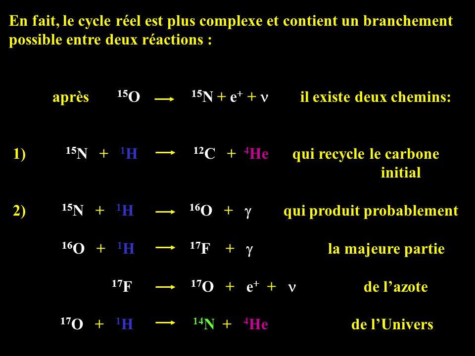 En fait, le cycle réel est plus complexe et contient un branchement