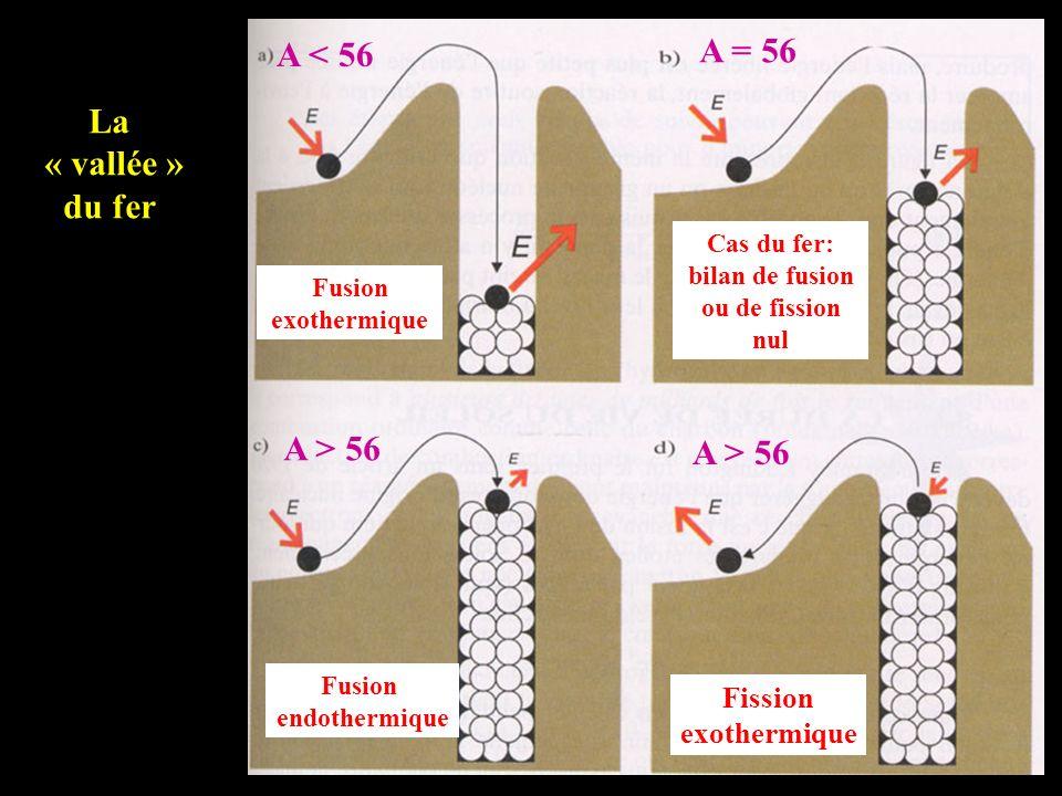 A = 56 A < 56 La « vallée » du fer A > 56 A > 56 Fission