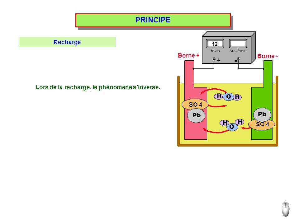 - PRINCIPE Recharge Borne + Borne - +