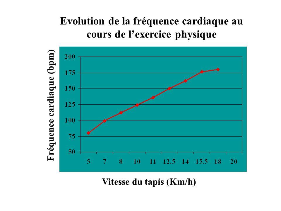 Evolution de la fréquence cardiaque au cours de l'exercice physique
