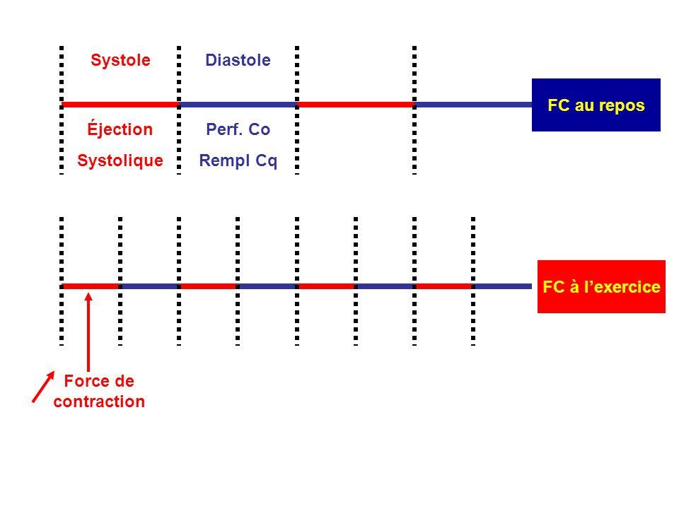 Systole FC au repos. Diastole. Éjection. Systolique.