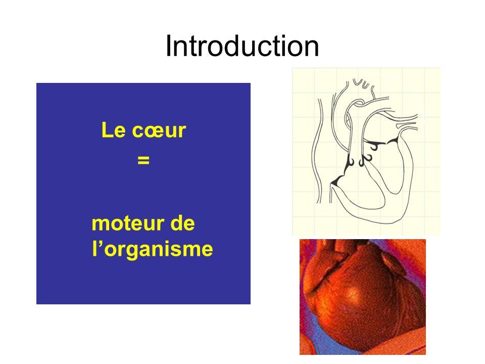 Introduction Le cœur = moteur de l'organisme
