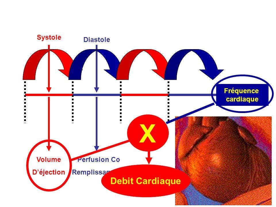 X Debit Cardiaque Systole Fréquence cardiaque Diastole Volume