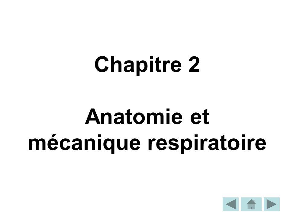 Anatomie et mécanique respiratoire