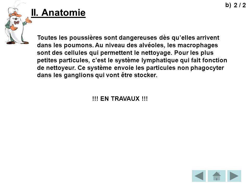 b) 2 / 2. II. Anatomie.