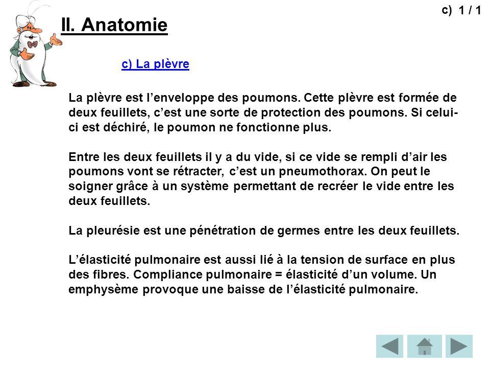 II. Anatomie c) 1 / 1 c) La plèvre