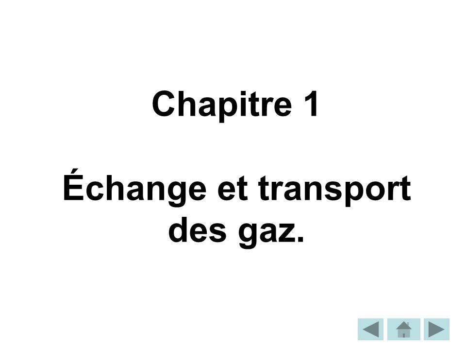Échange et transport des gaz.