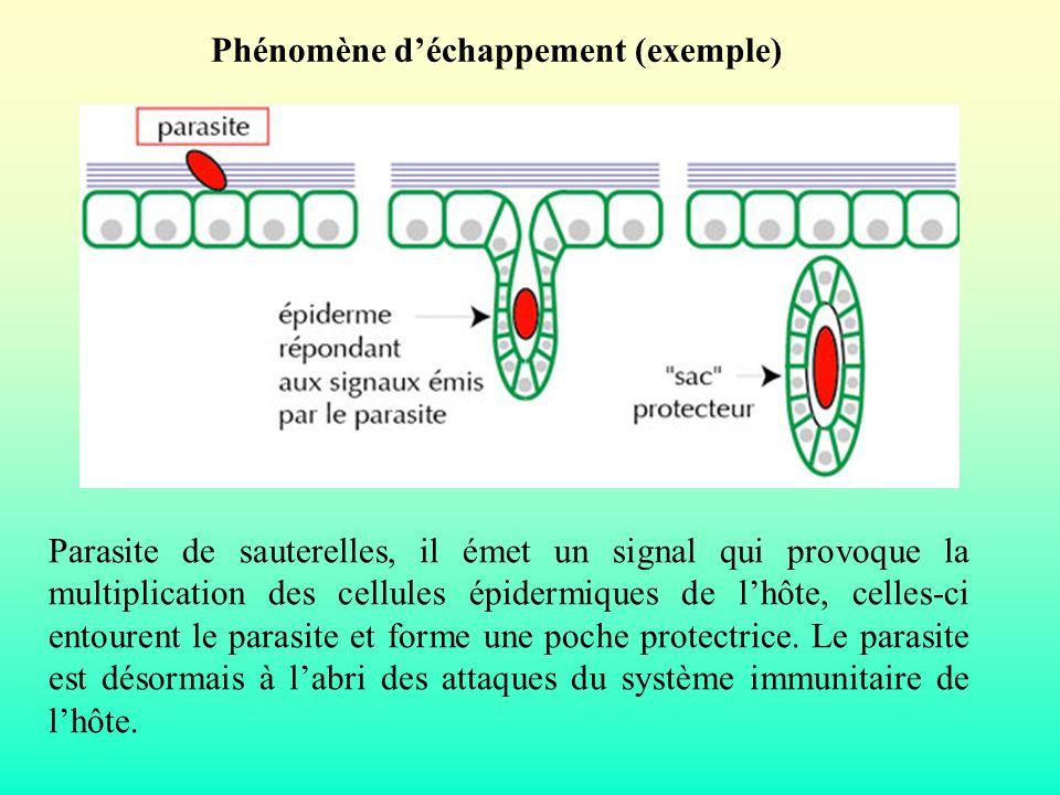 Phénomène d'échappement (exemple)