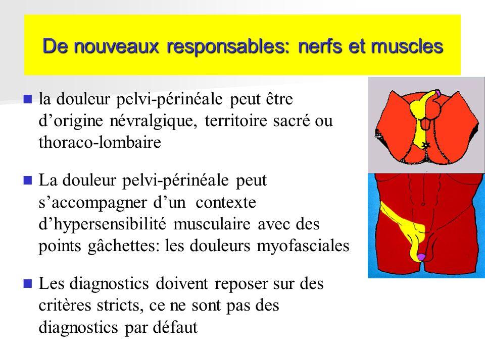 De nouveaux responsables: nerfs et muscles